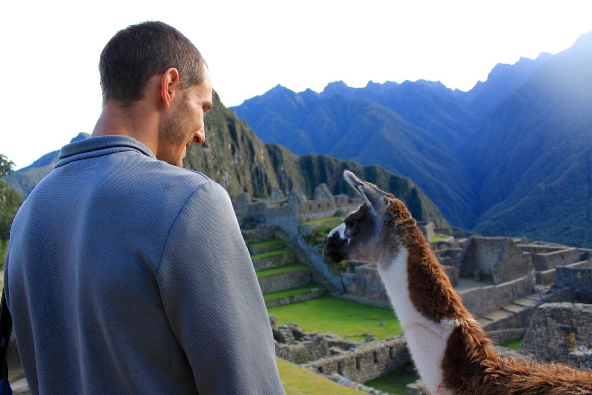 Chris looking at an Alpaca during his career break travels.
