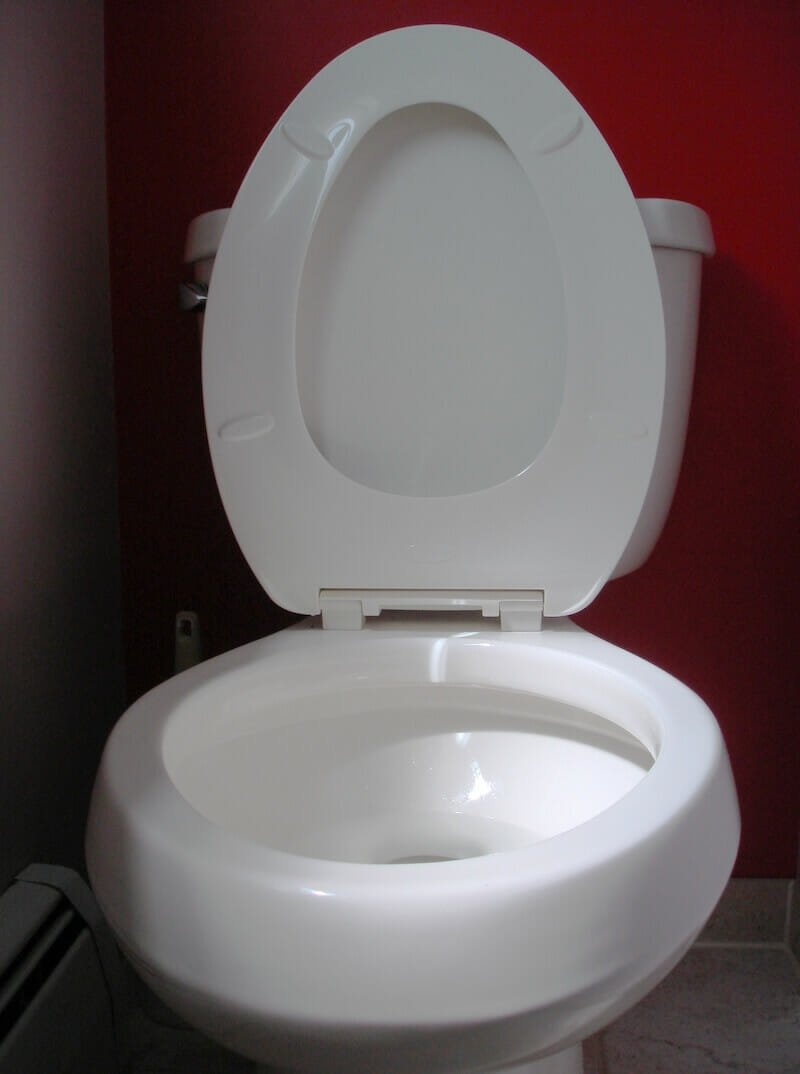 Toilet with seat up, which you'll never have to argue over again if you pee sitting down.