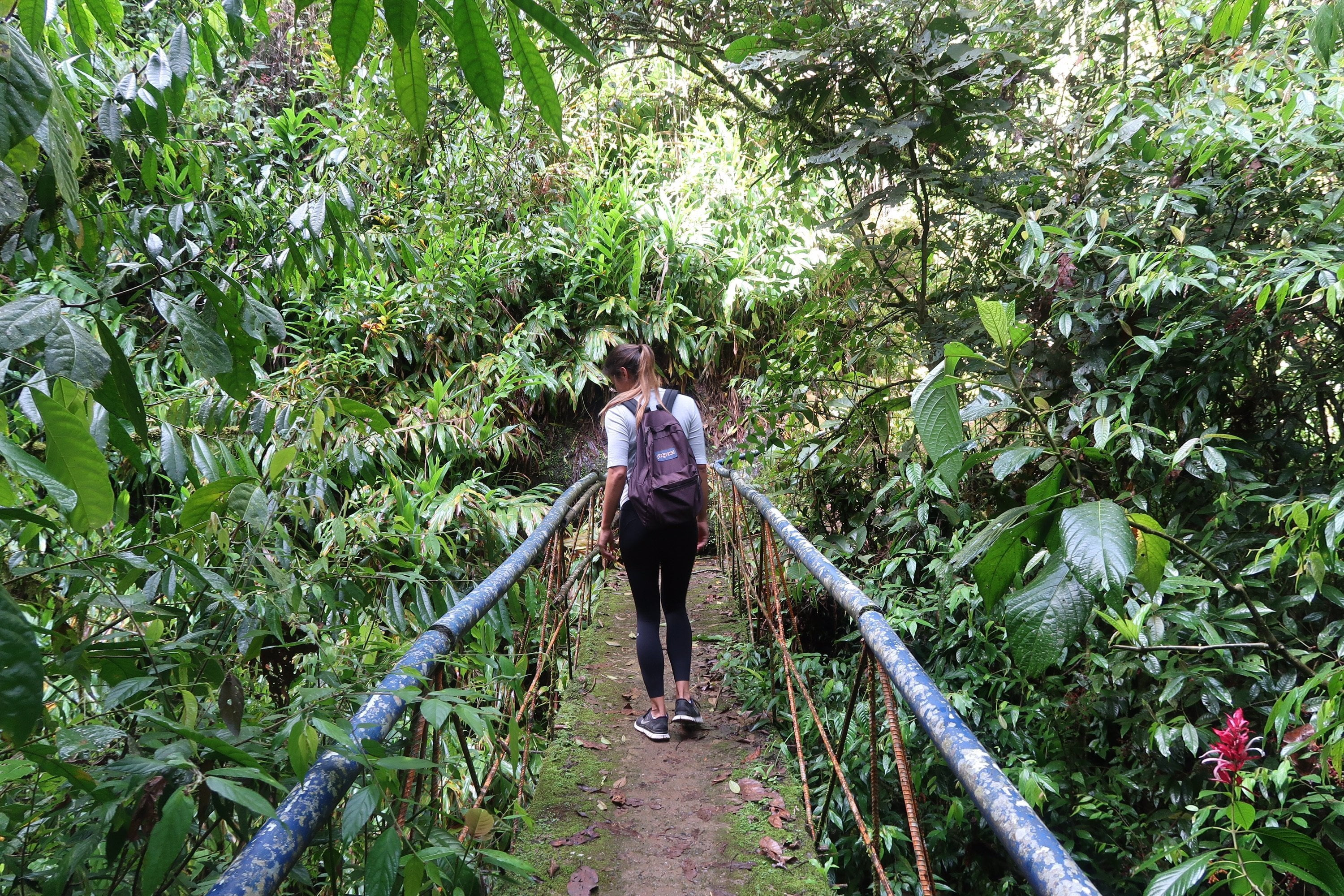 Kim walking over bridge in Jardin Colombia