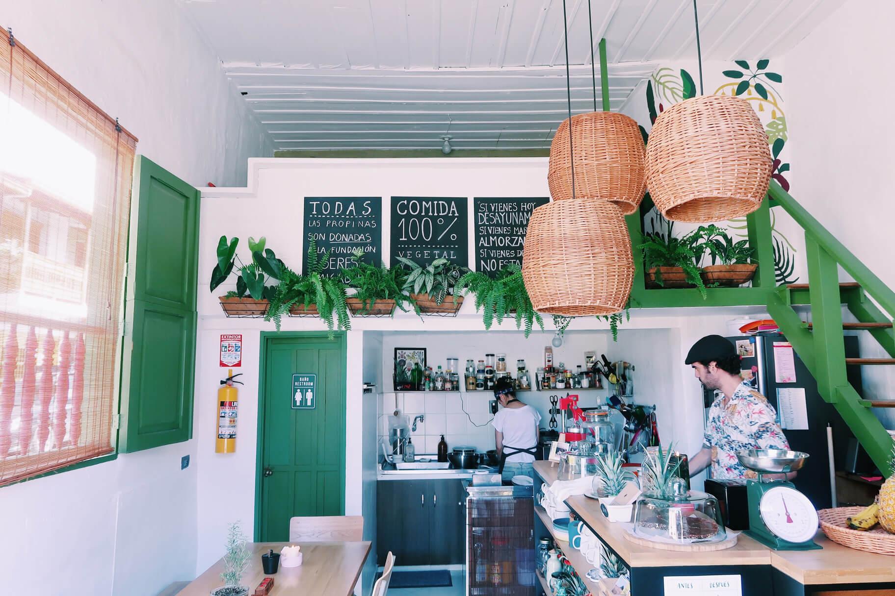 Consulado Vegetal Jardin Antioquia