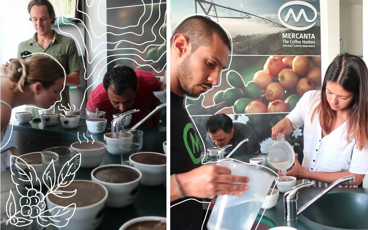 Cover image for taste test to find the best coffee in Medellin