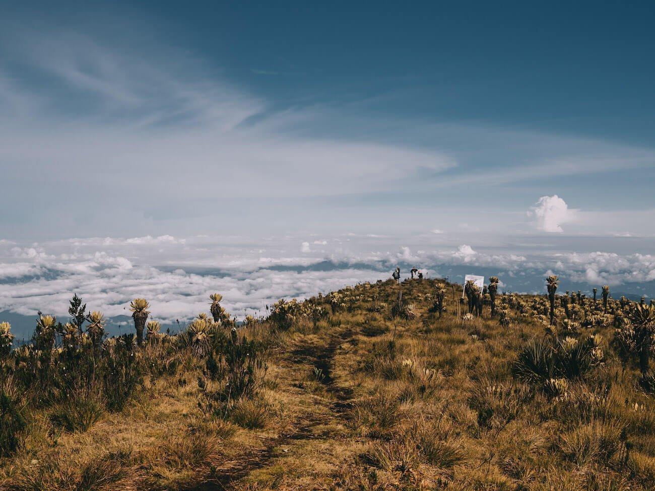 ridge up to Alto Campana with clouds below
