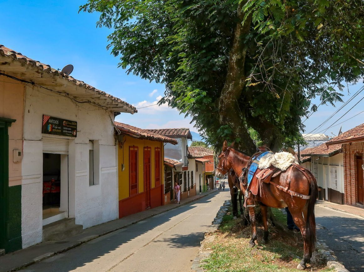 Street in Venecia, Colombia with horse parked out front.