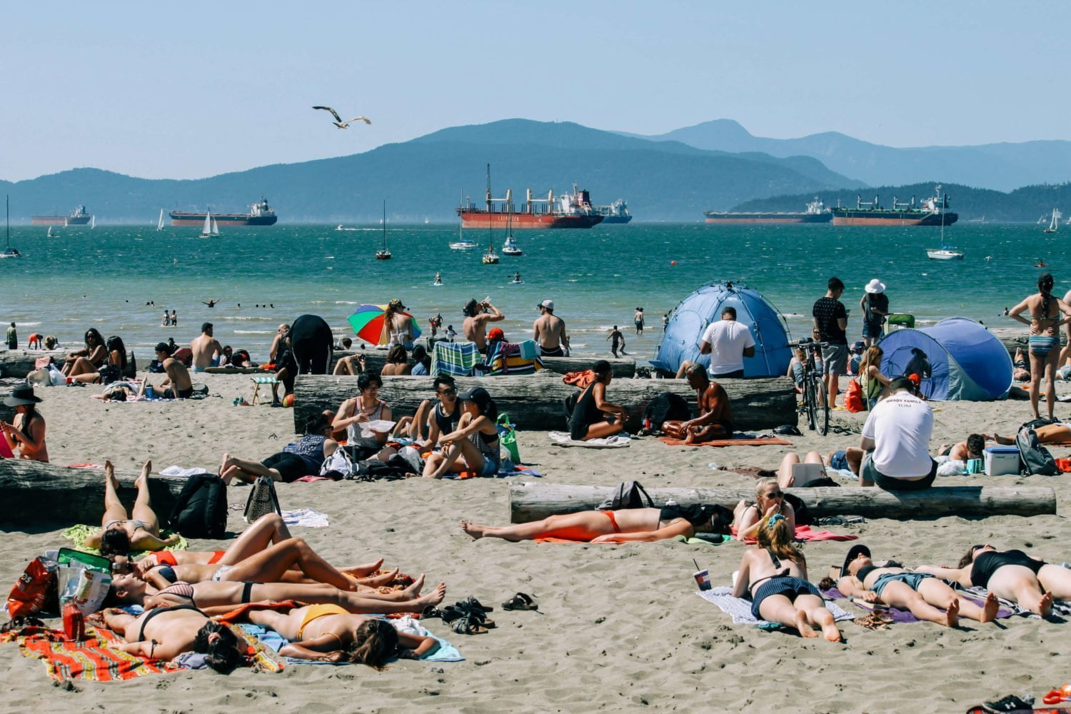 people tanning on busy kits beach in vancouver