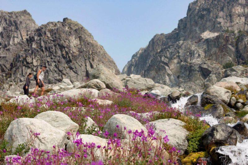 Brandywine meadows hike guide cover image
