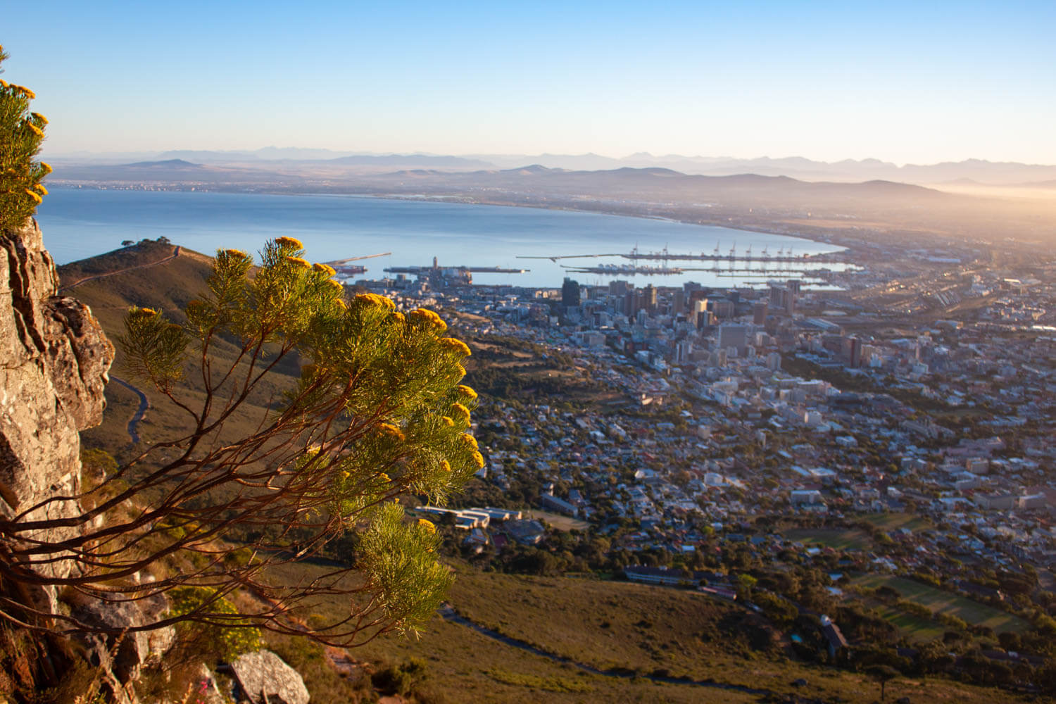 View of downtown Cape Town from Lion's Head