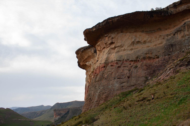Mushroom Mountain