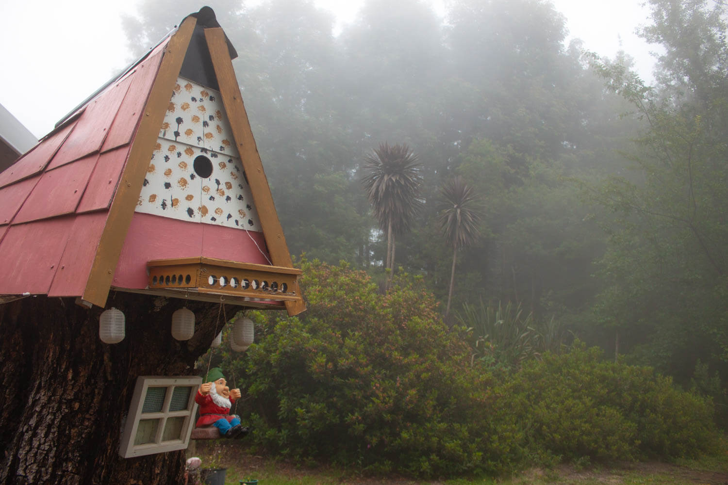Misty forest and gnome home in Hogsback