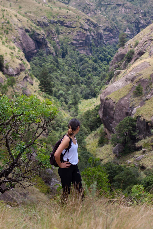 Looking back on Rainbow Gorge