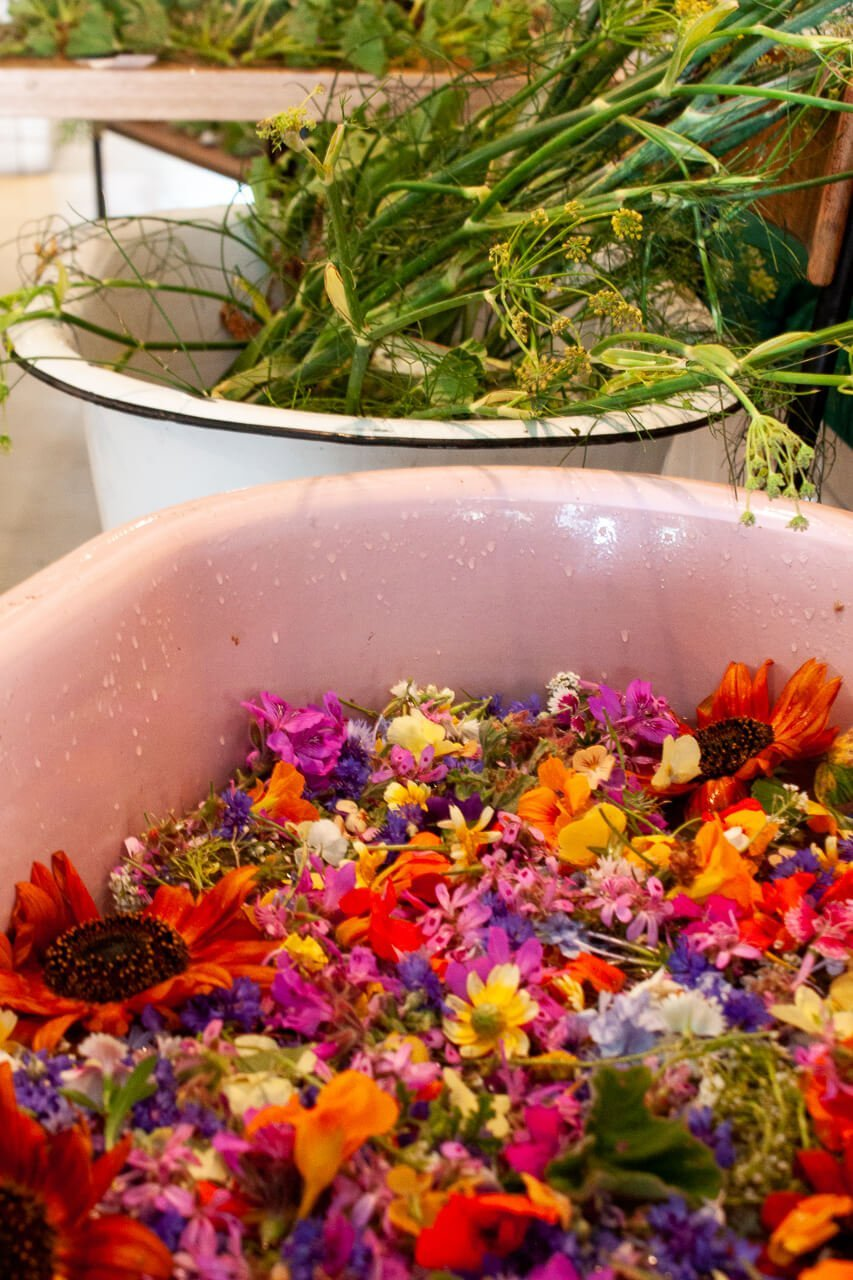 colorful bath of fresh wild flowers for botanical workshop top cape town food experience