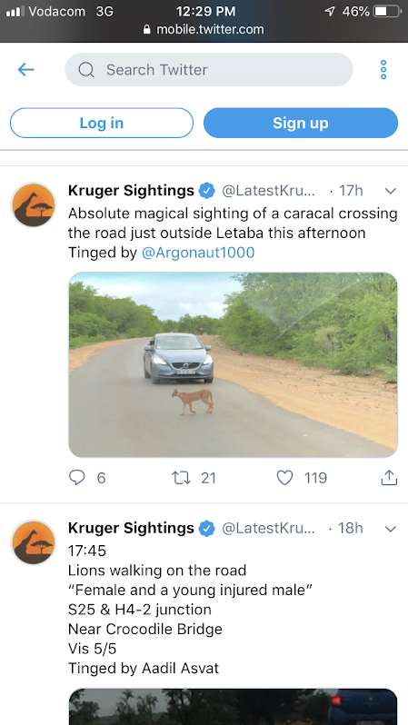 Screenshot of Twitter's Kruger Sightings page and Kim's dad's tweet.