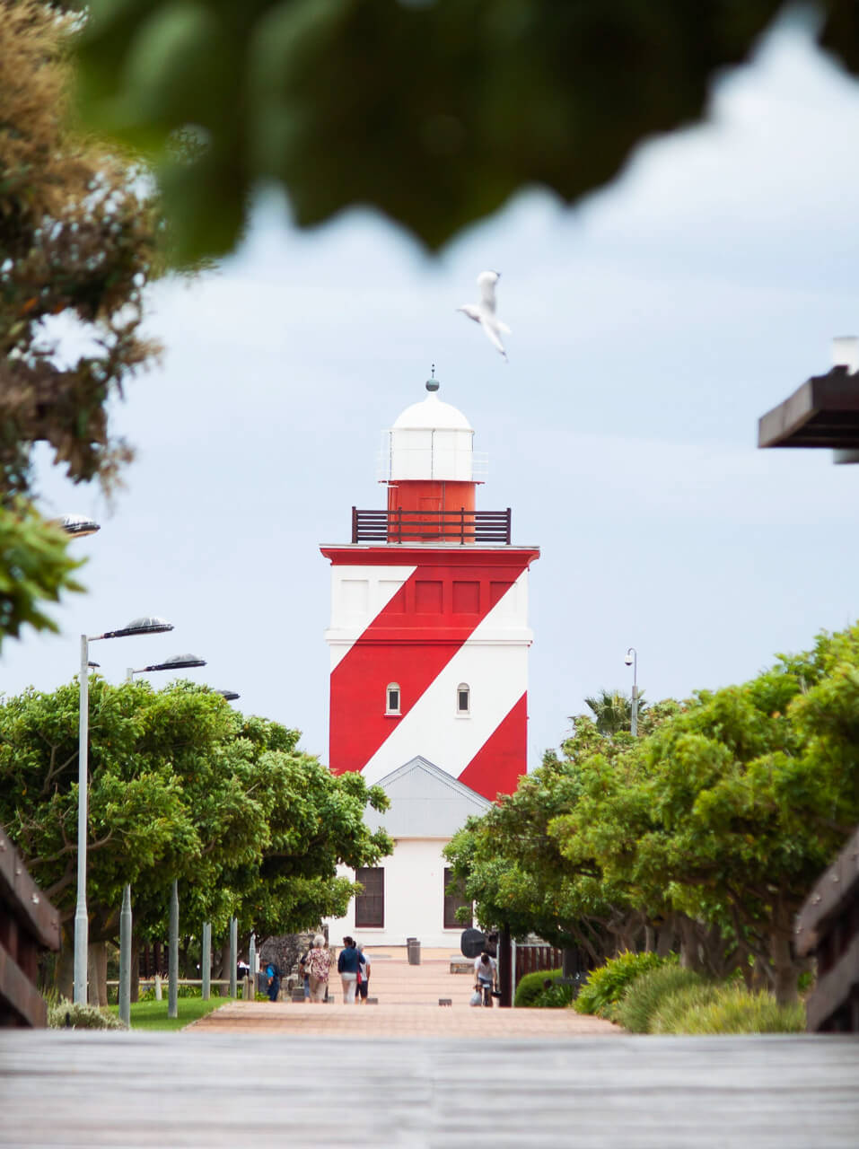 Things to do in Cape Town - go for a run around Green Point Park