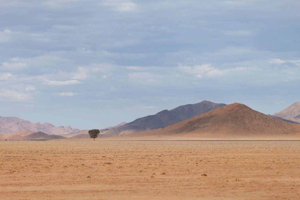 Arid landscape near Namibrand in Namibia