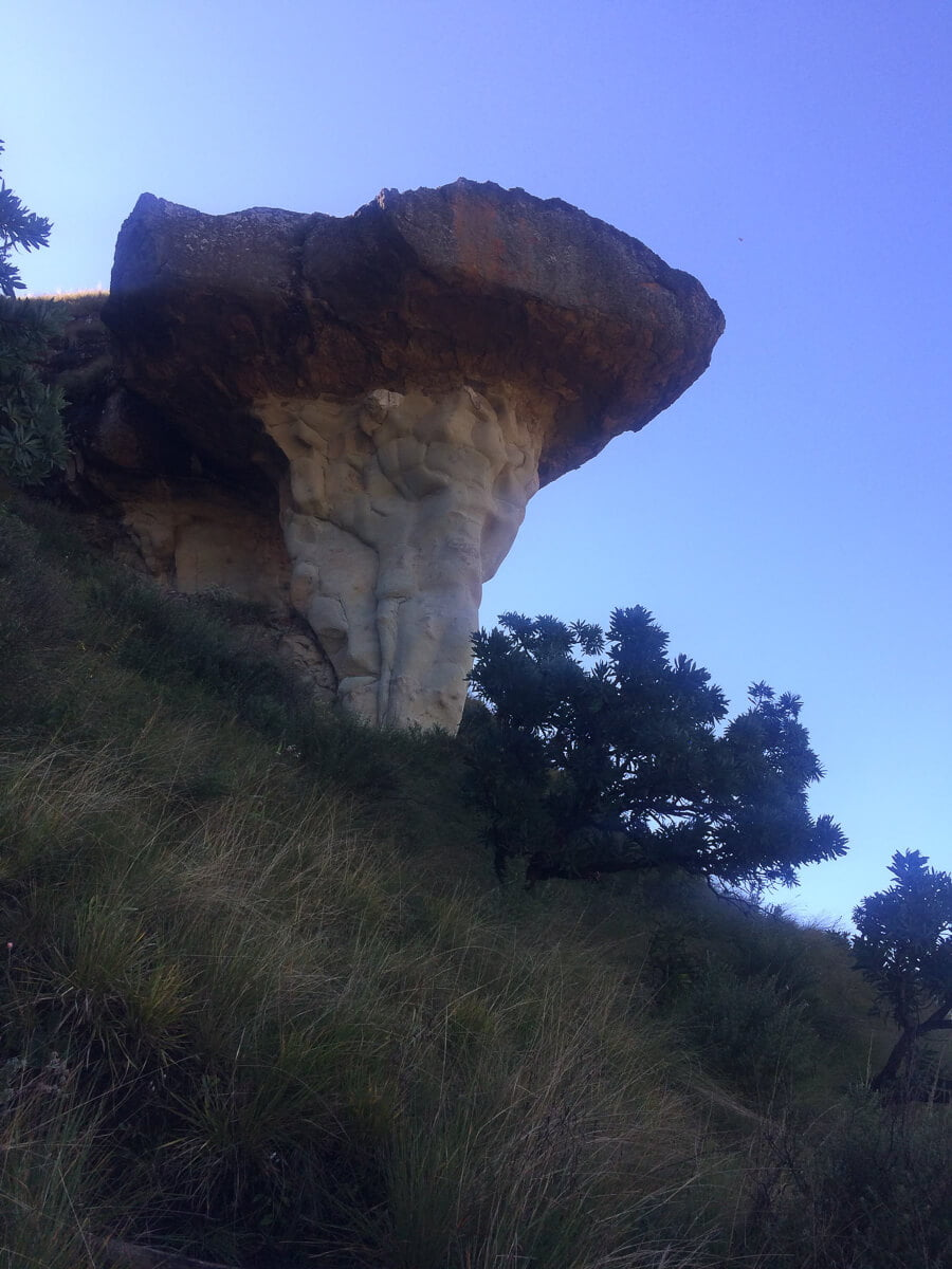 A very obvious mushroom rock while hiking in Drakensberg.