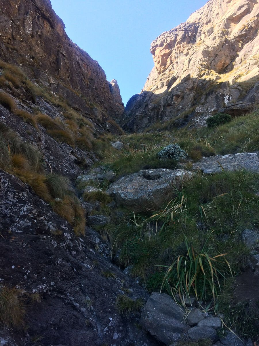 Midway up the gorge on the Amphitheatre hike in Drakensberg.