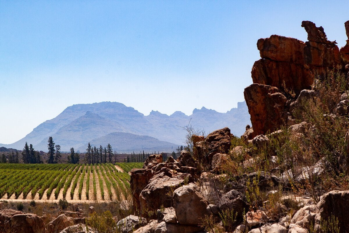 Cederberg winery amidst the red rock at Sandriff.
