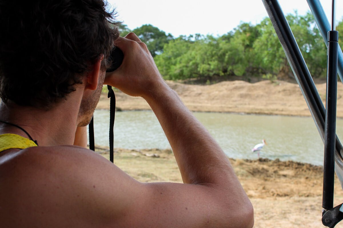 Chris looking at a tiny bird on our safari in Sri Lanka