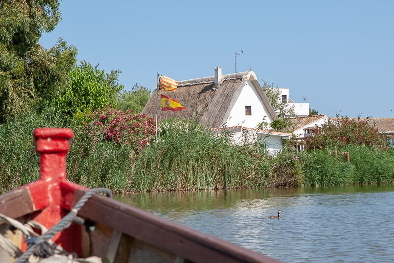 View from boat ride on a Valencia day trip to the Albufera.