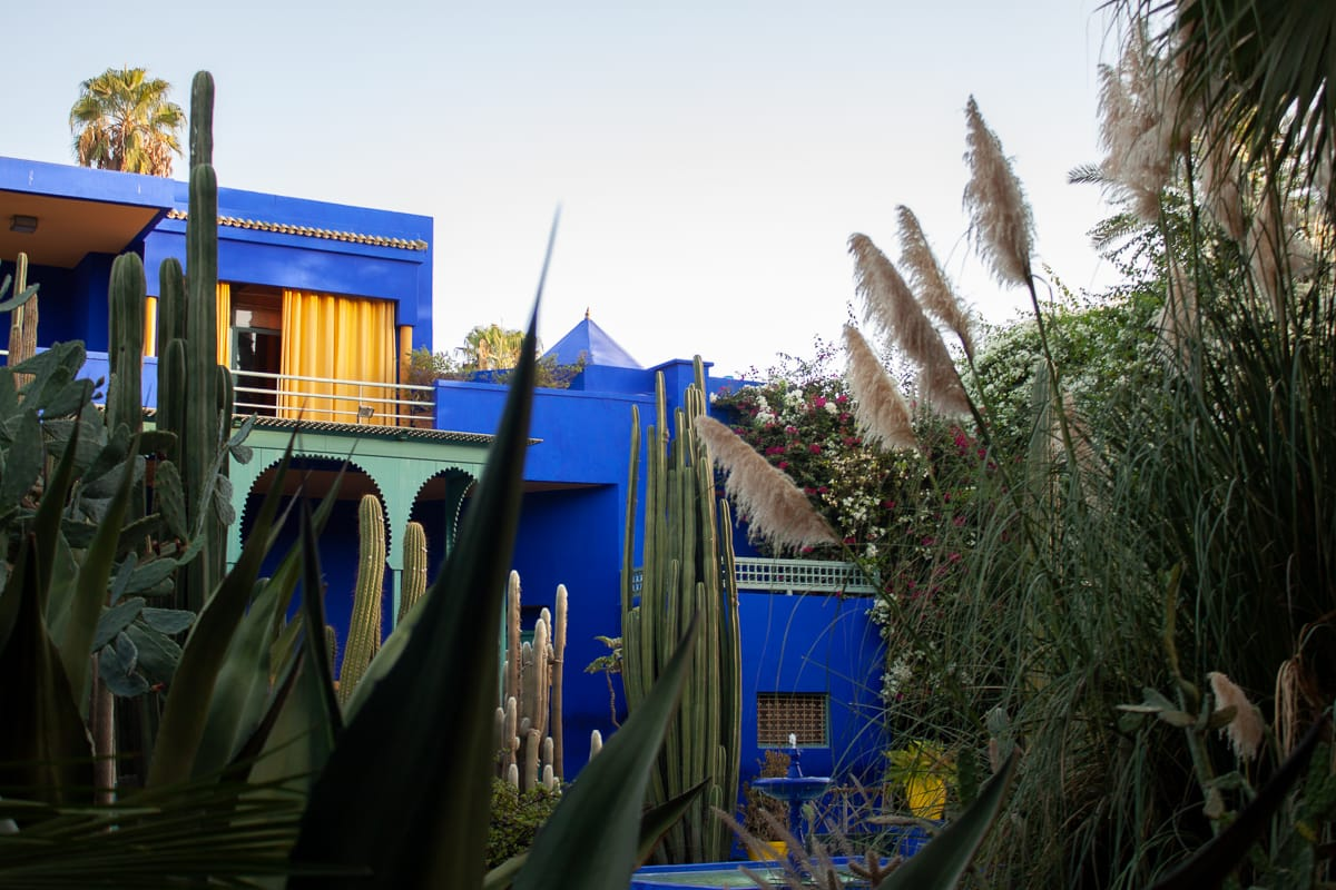 Jardin Majorelle with blue building in the background