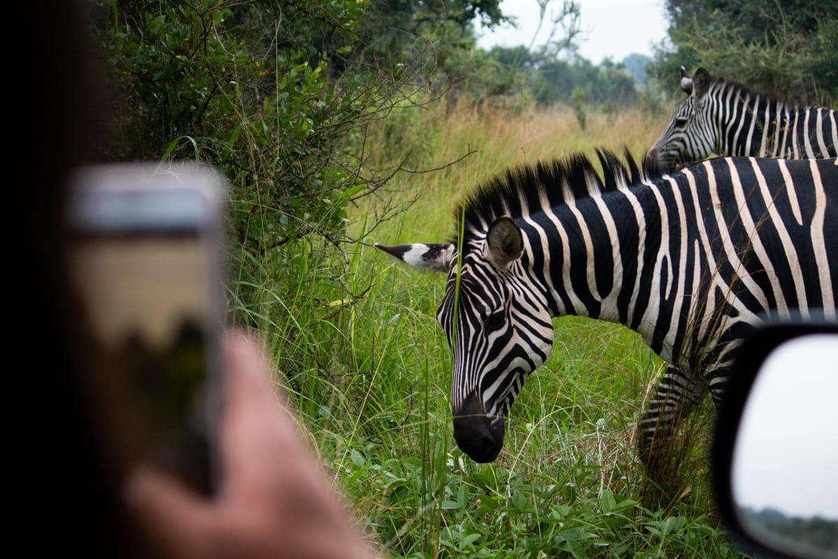 Rwanda travel tips cover image