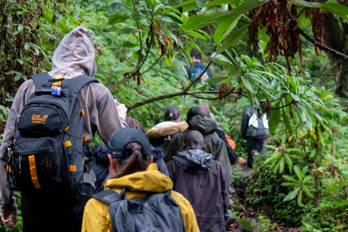 Mount Bisoke hike guide cover image