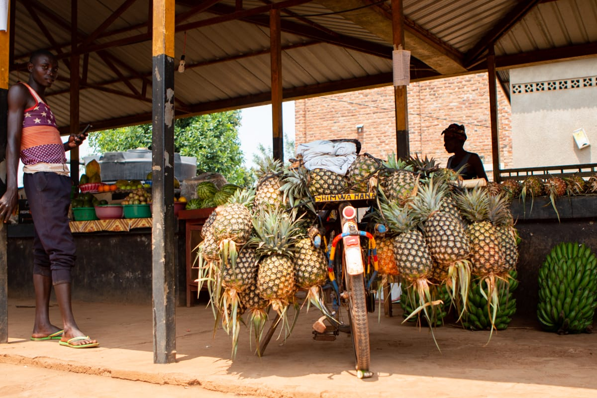 A local Rwandan man drops off his morning shipment of pineapples at a local cooperative produce stand.