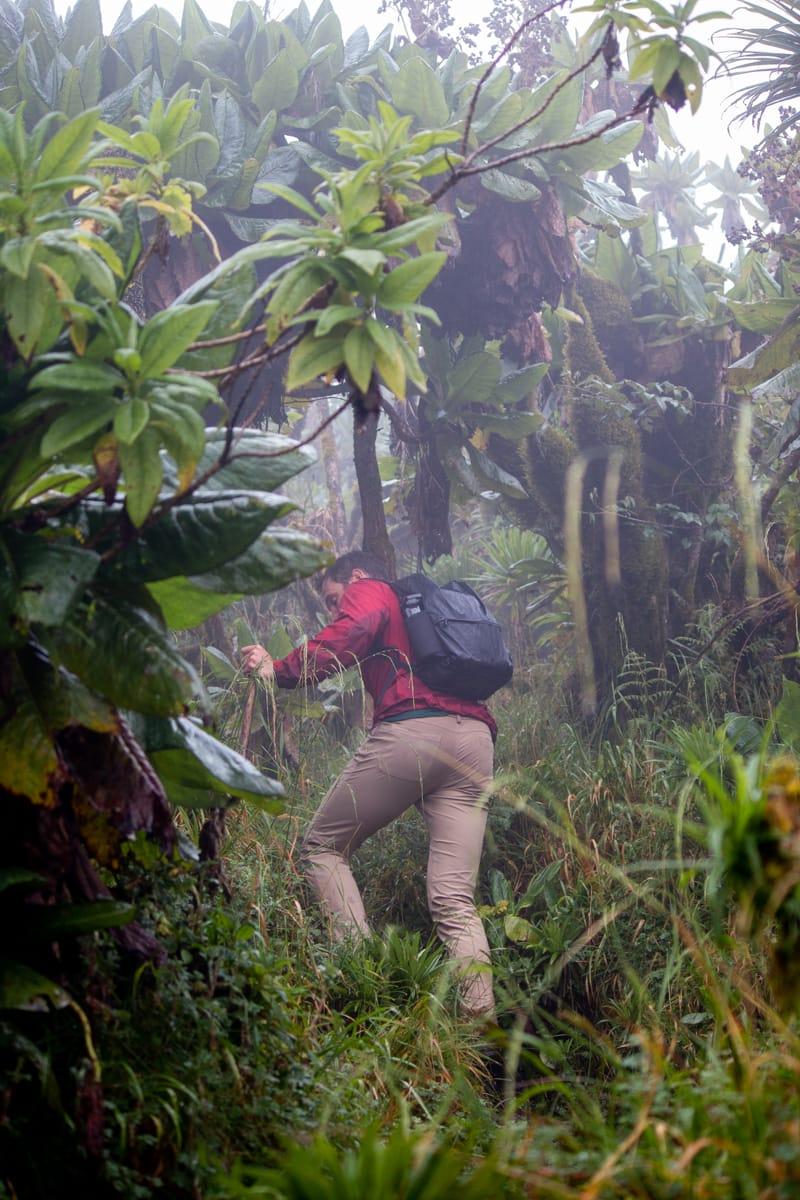 Chris hiking up Mount Bisoke in Lululemon ABC pants