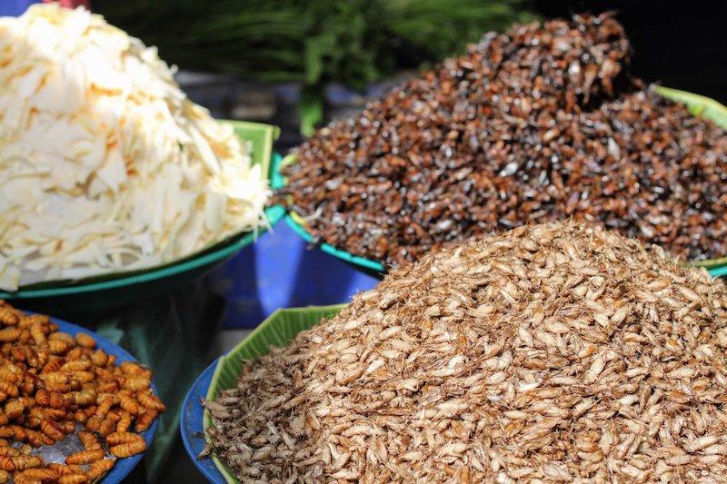 Piles of edible insects at a Bangkok food market