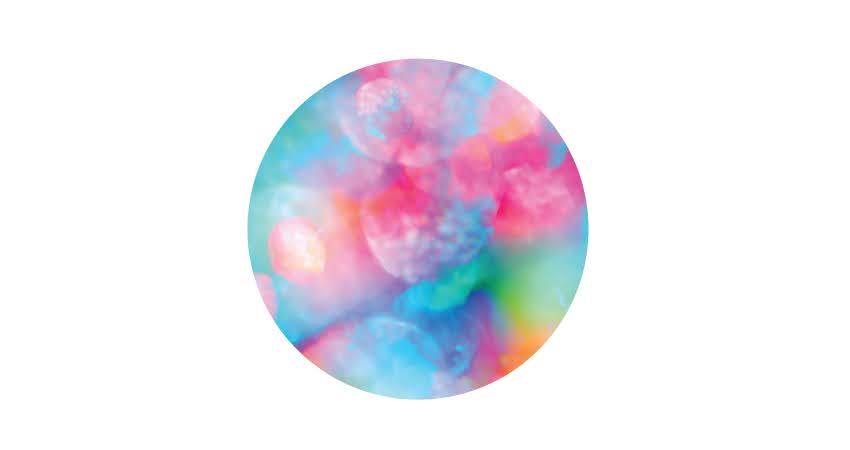 Delusion bubble diagram