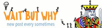 Wait But Why personal development blog logo