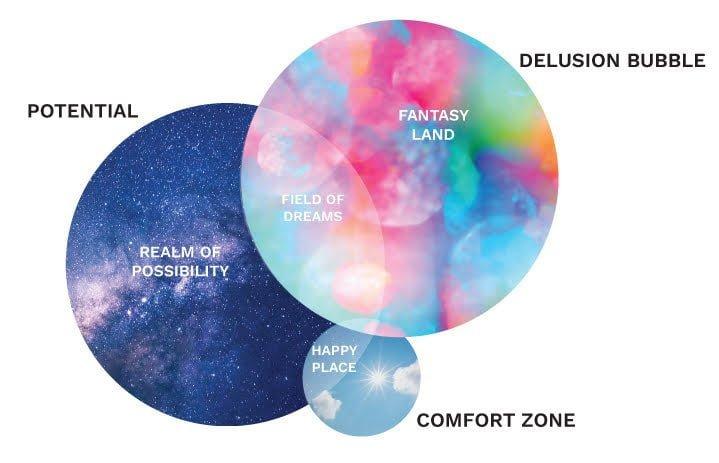 Delusion Bubble, Potential, and Comfort Zone diagram