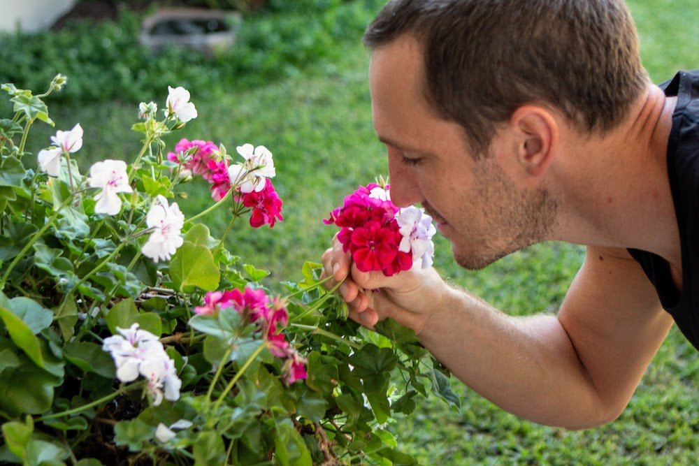 How to Develop Daily Habits cover image of smelling the flowers that result from persistent good habits.